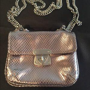 Talbots leather mini bag (silver)